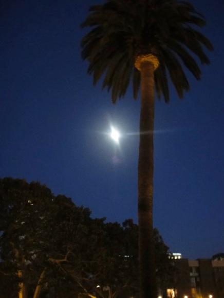 Goodnight California moon - Johhnyfromca