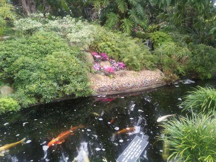 Encinitas Meditation Garden - JohnnyfromCA